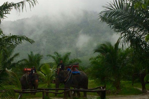 Таиланд. Моя азиатская история.